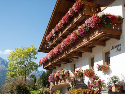 Edelweiss am Kinigerhof