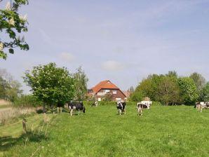 Bauernhof Ferienwohnung Linde