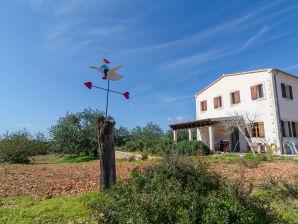 Villa Sa Pinassa