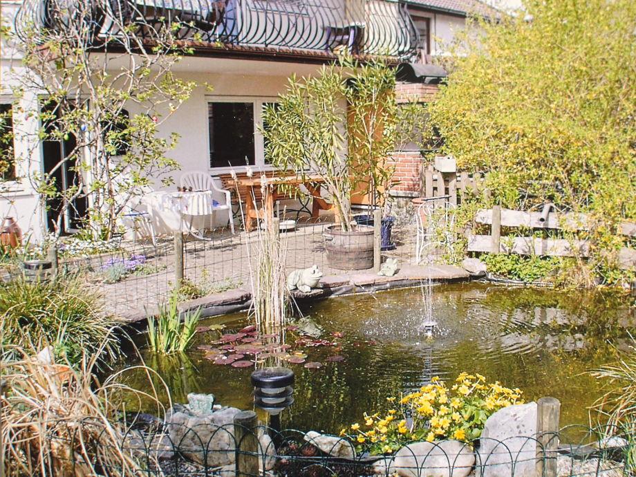 Terrasse und Teich