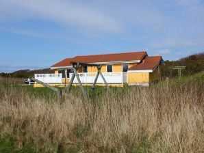 Ferienhaus Hauerslevs Hus (D477)
