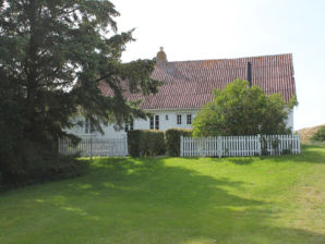 Ferienhaus Connies Hus (F014)