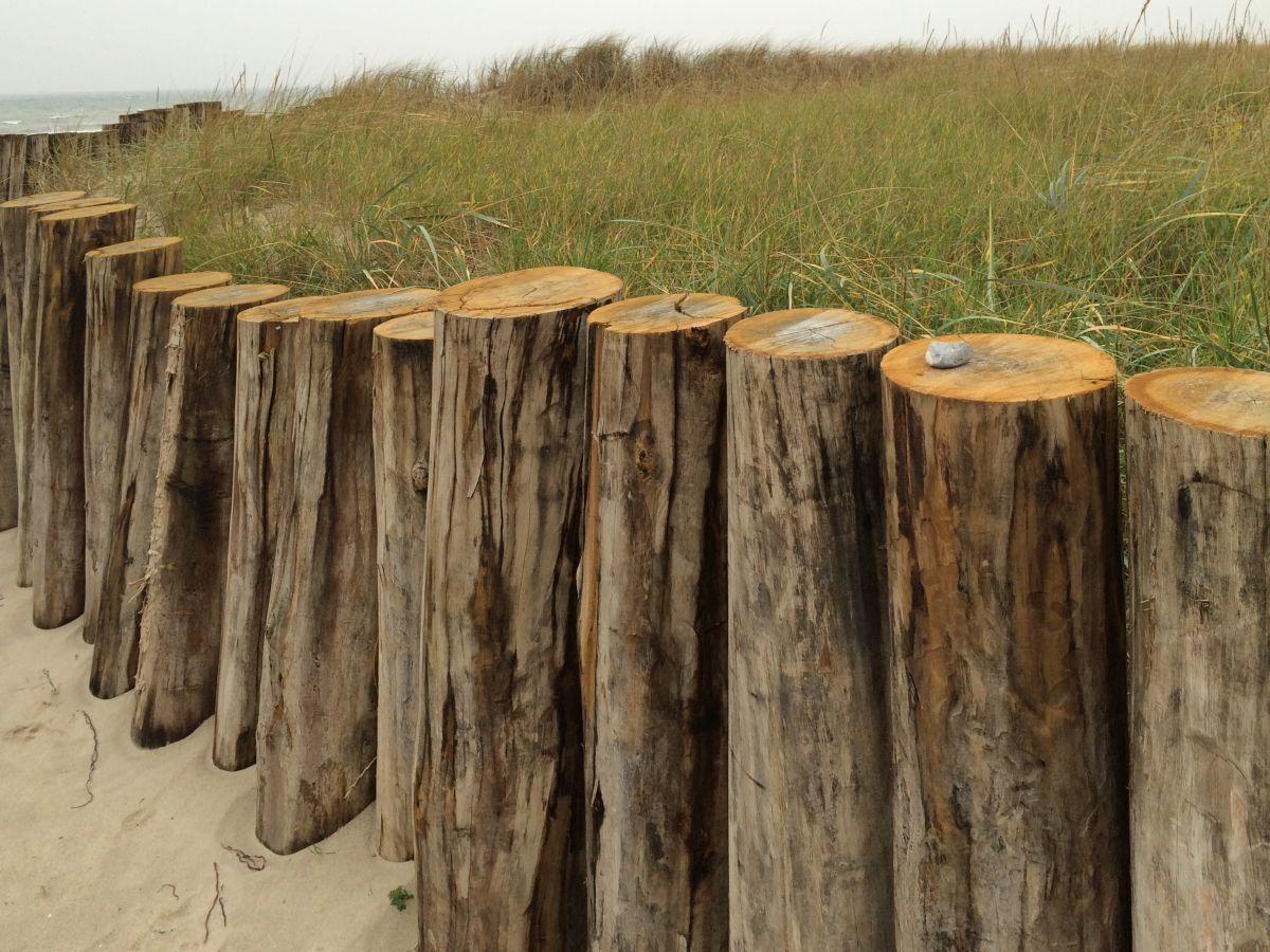 Ferienwohnung Leuchtturm 8 Ostsee Gro Enbrode Firma