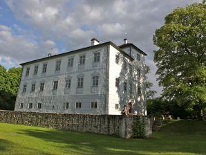Ferienwohnung Schloss Hofstetten