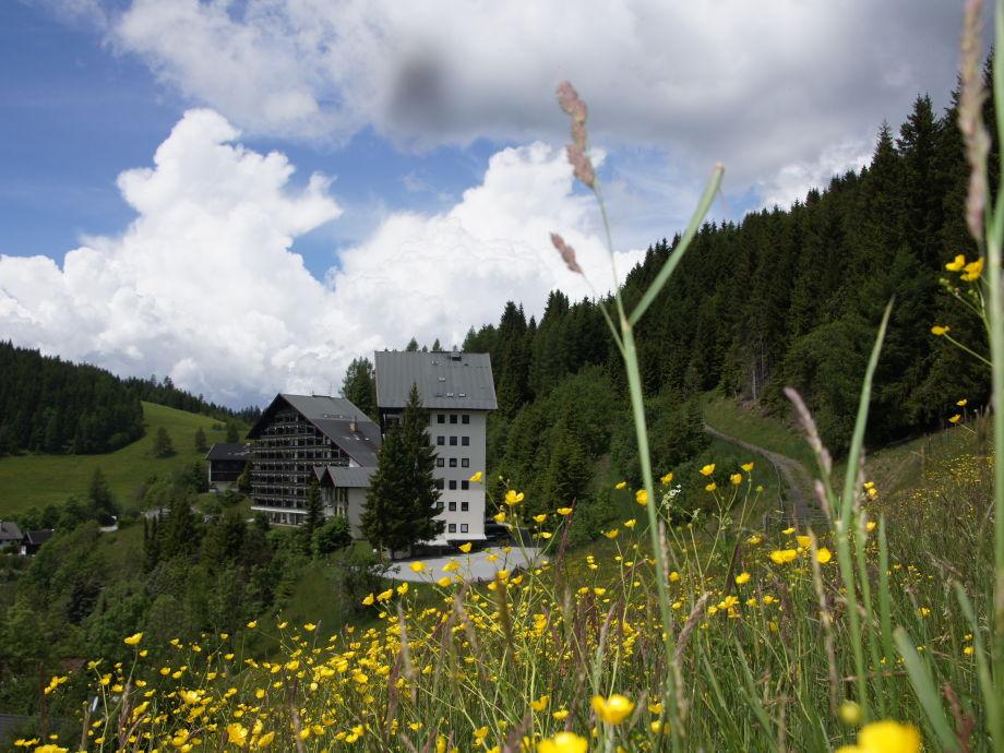 Blick von der Almwiese auf dei Ferienanlage