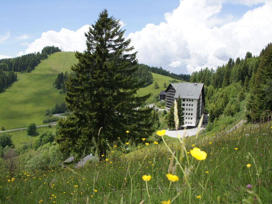 Blick von der Almwiese auf die Ferienanlage