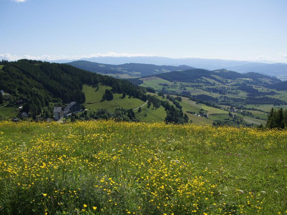 Fernsicht von Almwiese auf die Fereinanlage & Umgebung