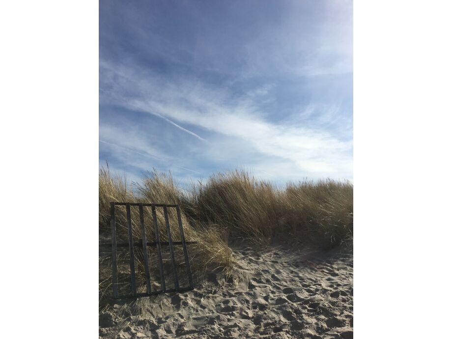 Strandkorbabsperrung in den Dünen