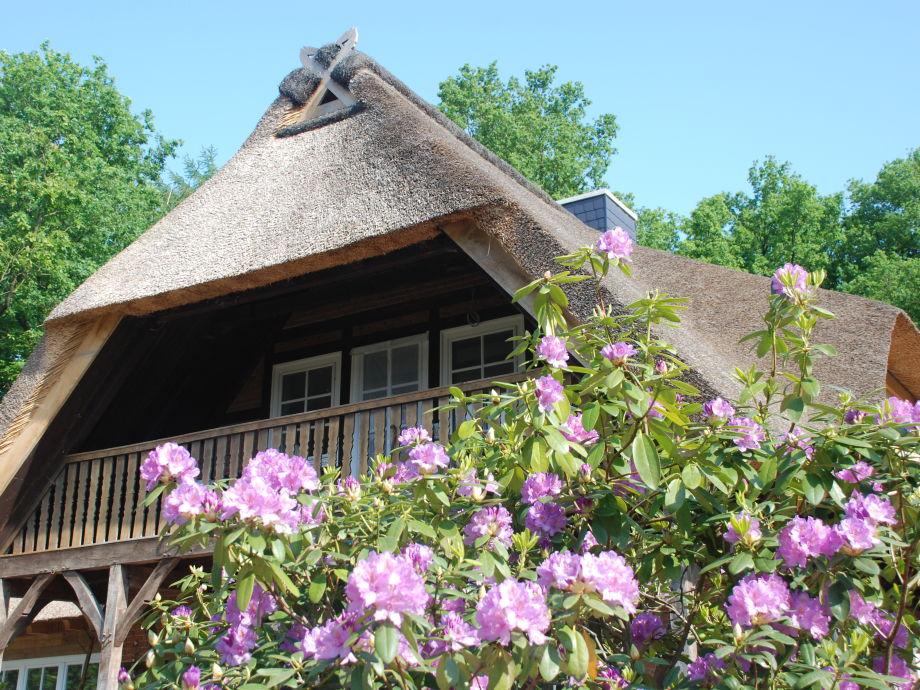 Außenaufnahme Ferienwohnung am Eichenpark