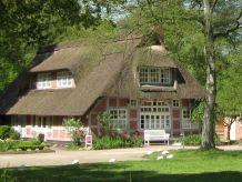 Ferienwohnung Rosenzimmer - Apartment