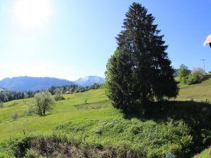 Ferienwohnung Steibis - Hochgratblick