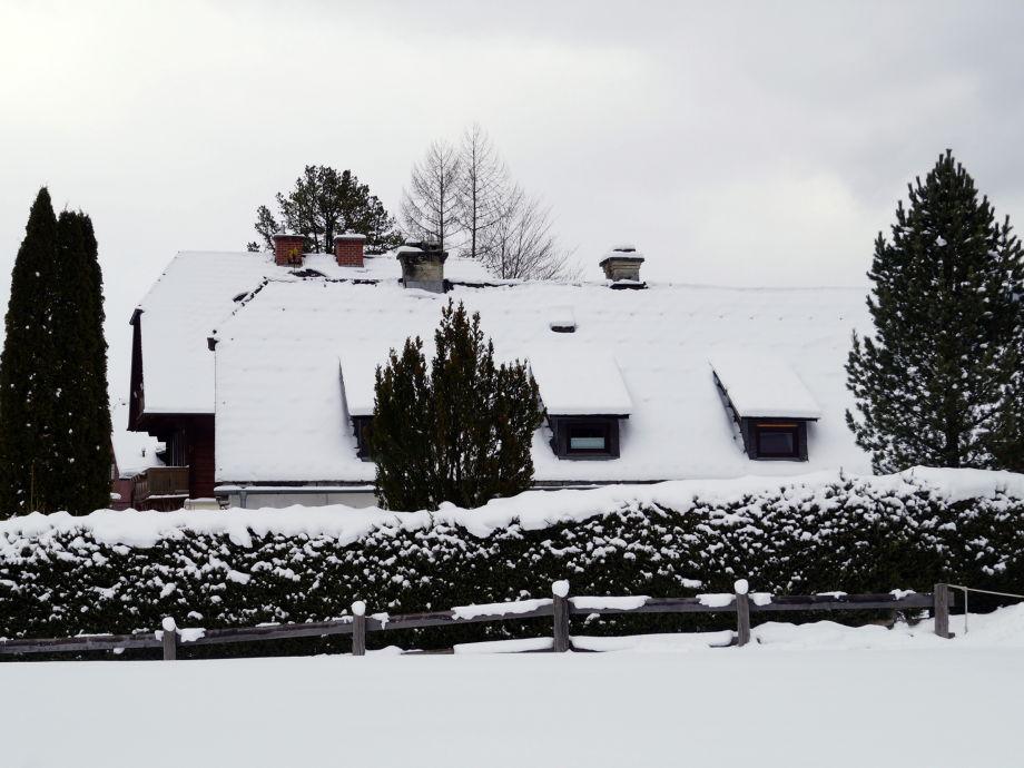 Absolut schneesicher im Winter