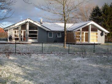 Dänisches Ferienhaus Annik