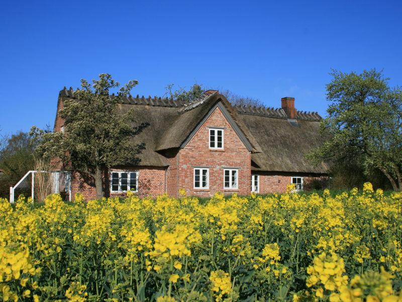 Ferienhaus Altes Schusterhus