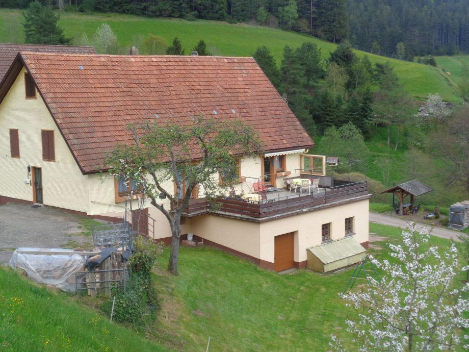 Haus Morlok im Sommer