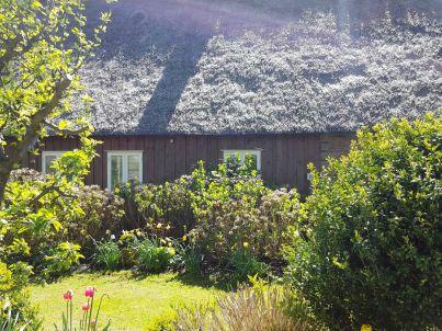 Traum Ferienhaushälfte unter Reet
