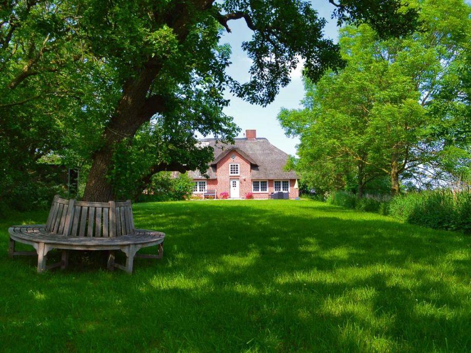 Blick aus dem Garten auf das Ferienhaus