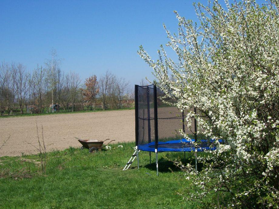 ferienwohnung abendsonne auf dem lohbacher hof leipzig. Black Bedroom Furniture Sets. Home Design Ideas