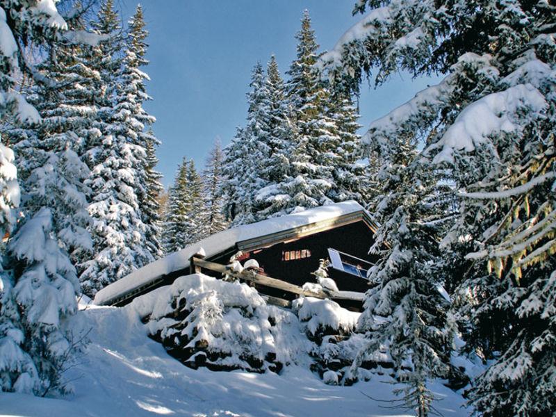 Skihütte Herrliche Ski- und Berghütte in Wagrain