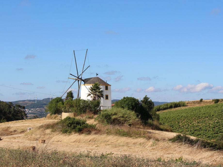 Ferienhaus Windmühle in der Estremadura