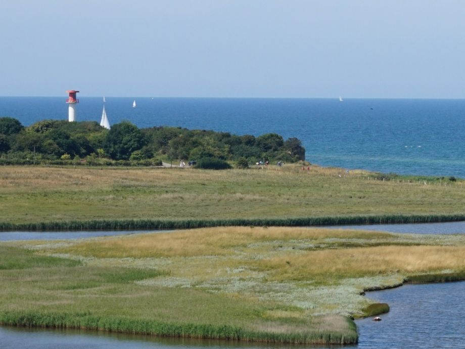 Ausblick direkt auf die Ostsee