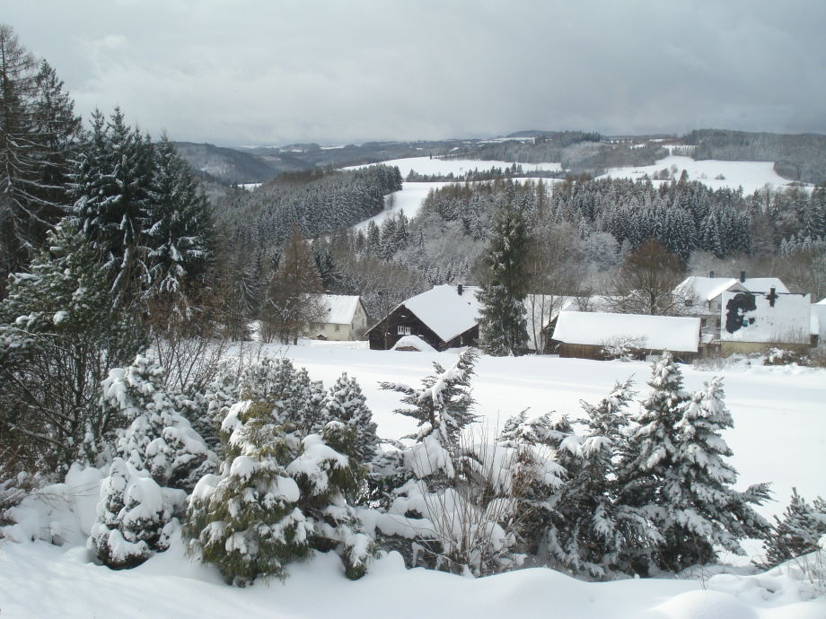 Winter im Oberland