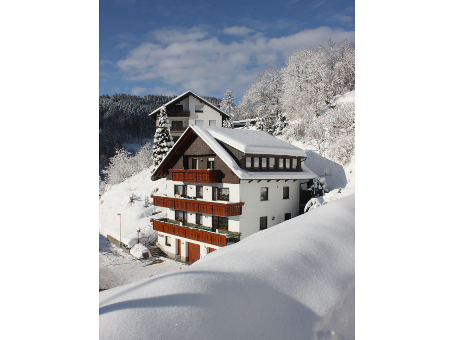 House Armbruster in winter