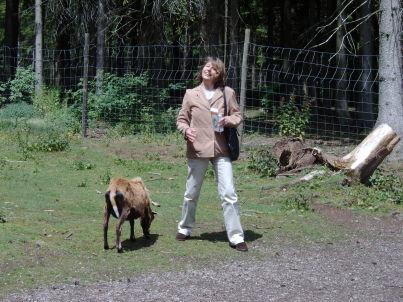 Ihr Gastgeber Doris Klinkhammer