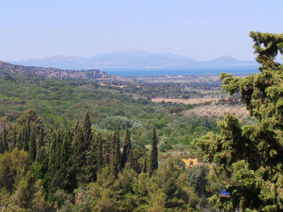 Sensationeller Blick vom Balkon auf Elba
