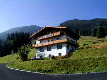 Ferienwohnung Almliesl SAAB-145