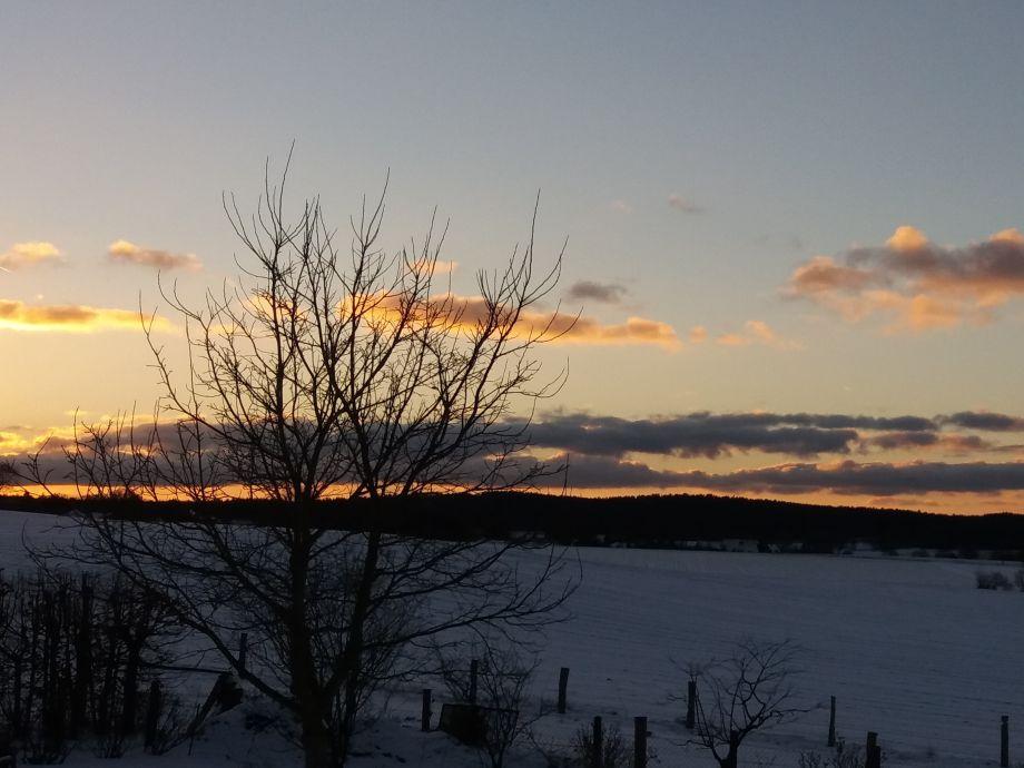 Winterblick aus dem Fenster