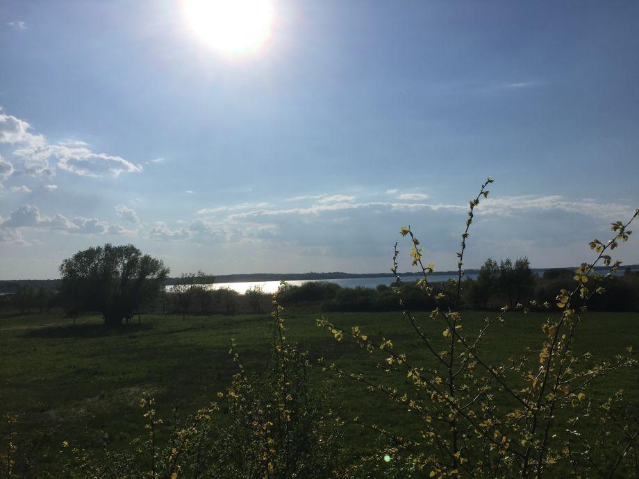 Blick auf den Grimnitzsee