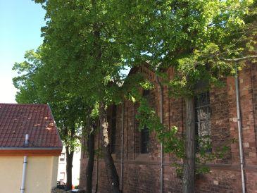 Ferienhaus Zur Mainpforte
