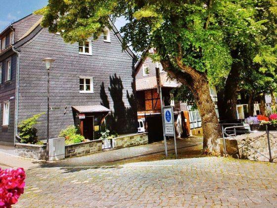 ferienwohnung abzuchtperle goslar harz frau steffi voges. Black Bedroom Furniture Sets. Home Design Ideas