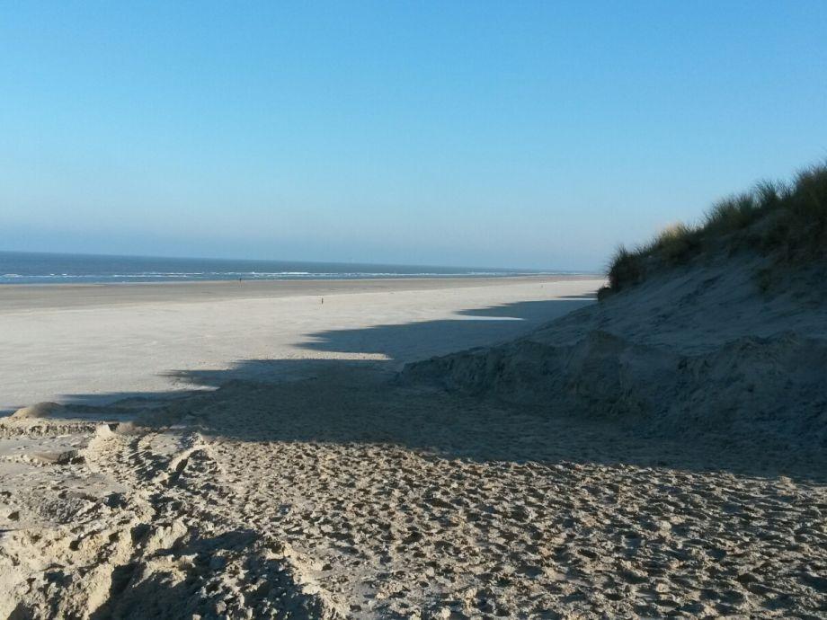 Strand Ameland 800 m entfernt