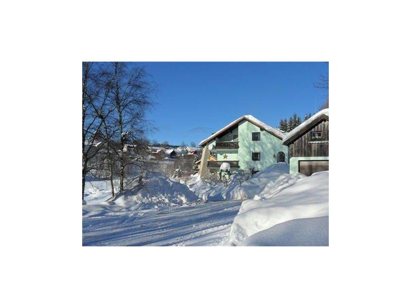 Ferienwohnung mit Terrasse im Haus Naabtal