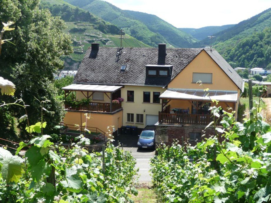 Weingut Lindenhof,inmitten von Weinbergen