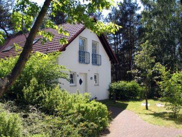 Ferienhaus Ferienpark Lenzer Höh VI