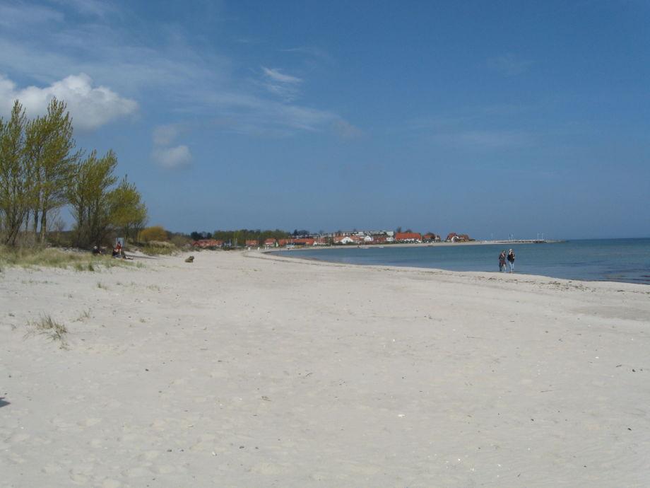Am Strand nahe des Vogelschutzgebietes in Hohwacht