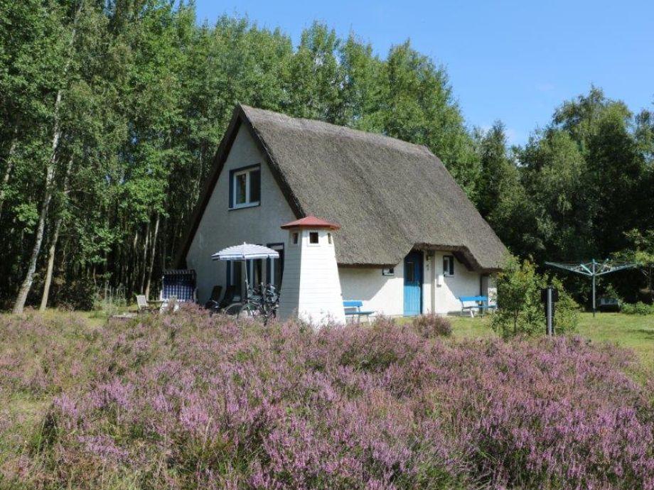 Ferienhaus Hiddensee Heide