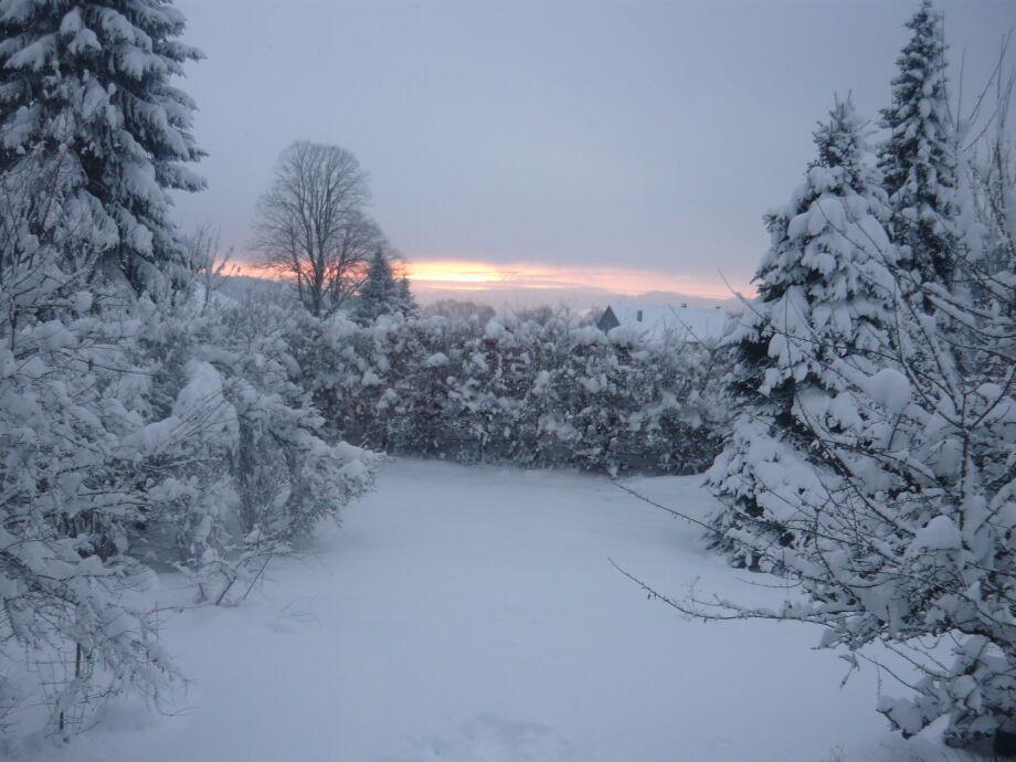Schnee Anfang 2017