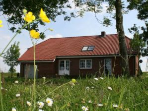 Holiday house Groß-Leiße at the dike