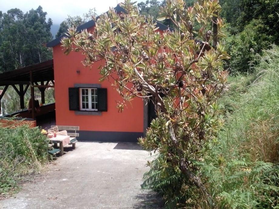 Casa Laranja in Nature