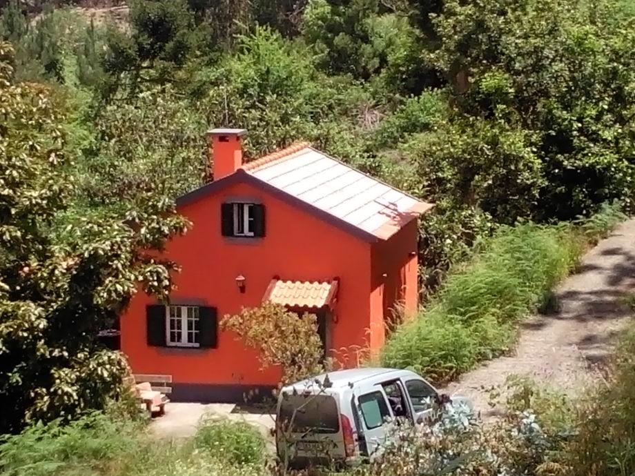 Casa Laranja im Wald