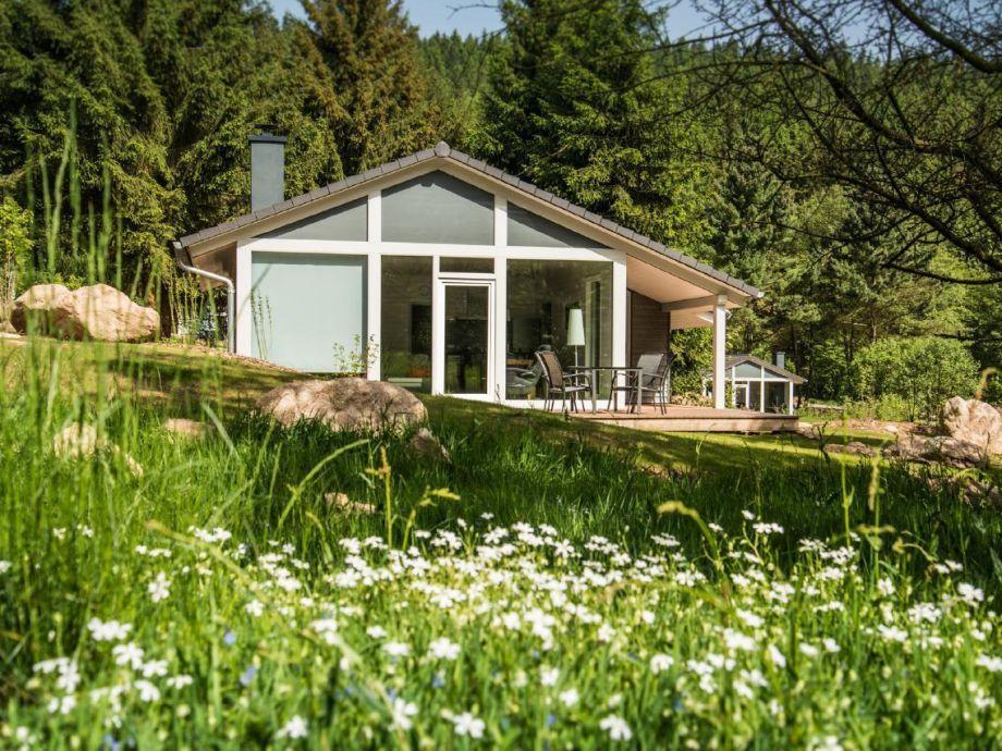 Außenaufnahme Modernes Ferienhaus mitten im Wald