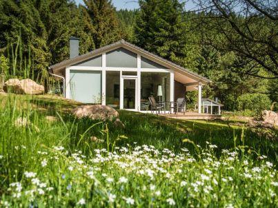 Modernes Ferienhaus mitten im Wald