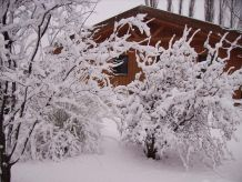Ferienhaus Traumhaftes Holzferienhaus in ruhiger Lage