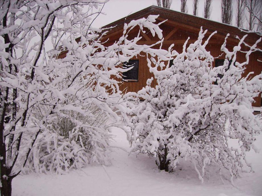 Außenaufnahme Traumhaftes Holzferienhaus in ruhiger Lage