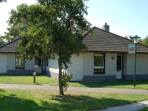 Holiday house Kustpark Texel Typ T5A