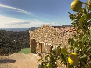Ferienhaus Villa Limonaia